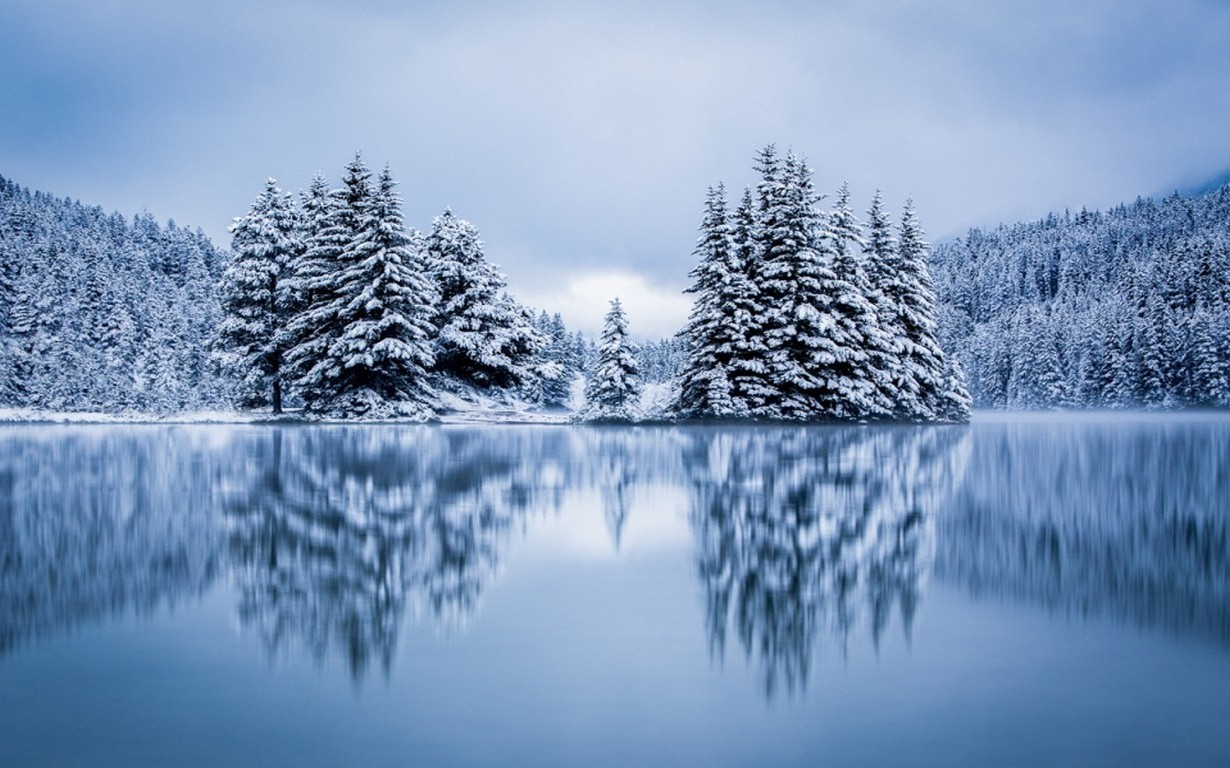 pin snow wallpapers trees - photo #40